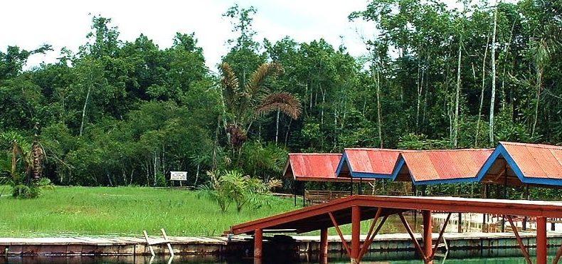 Five Beautiful Tourist Destinations You Should Visit In Delta State Nigeria